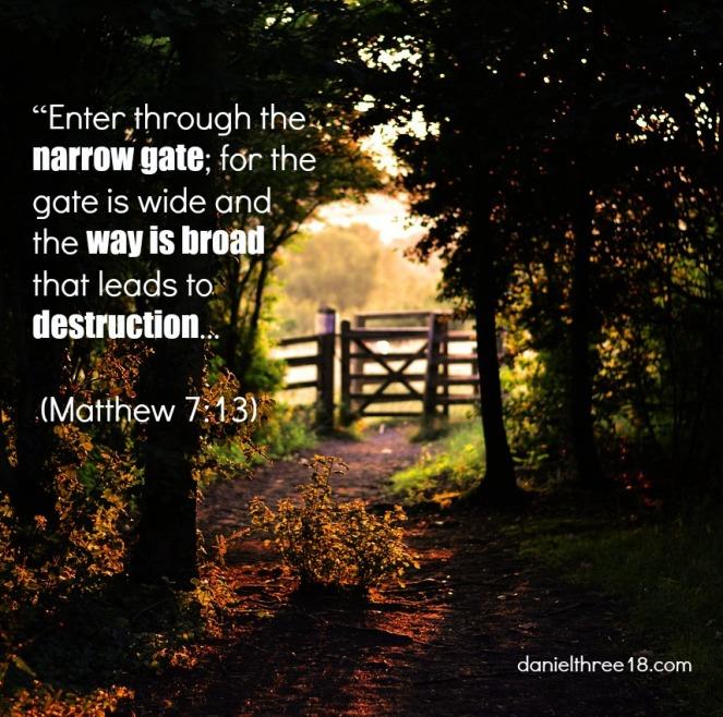 Matthew 7.13